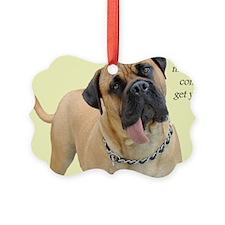 Mastiff Birthday Card Picture Ornament