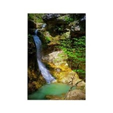 Eden Falls at Lost Valley Rectangle Magnet