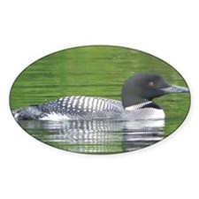 Loon at Peace Decal