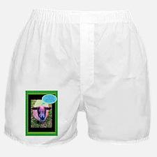 No Idea Boxer Shorts