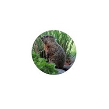 Groundhog Mini Button