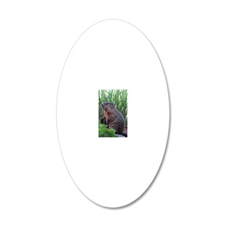 Groundhog 20x12 Oval Wall Decal