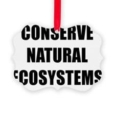 CONSERVE NATURAL ECOSYSTEMS BK Ornament