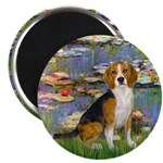 Lilies (#2) - Beagle #7 Magnet