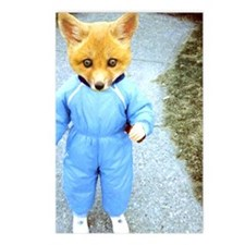 Baby Fox Postcards (Package of 8)