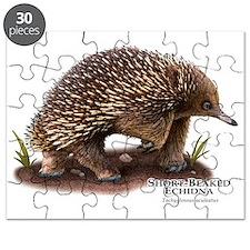 Short-Beaked Echidna Puzzle