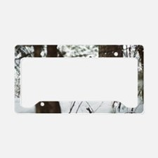 """""""Camouflage"""" License Plate Holder"""