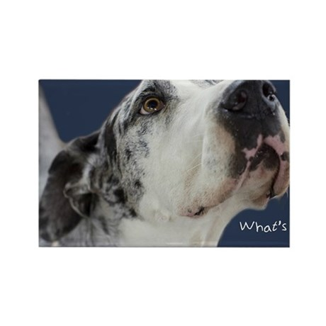 Great Dane Birthday Card Rectangle Magnet