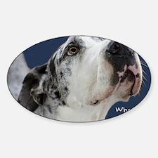 Great Dane Birthday Card Sticker (Oval)