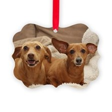 Dachshund Birthday Card Picture Ornament
