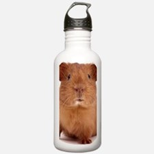 guinea pig face Water Bottle
