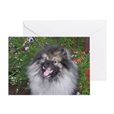 Keeshond Smiling Greeting Card