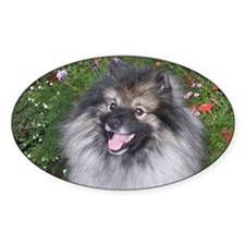 Keeshond Smiling Decal