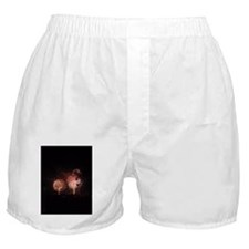 Boomin Fireworks Boxer Shorts