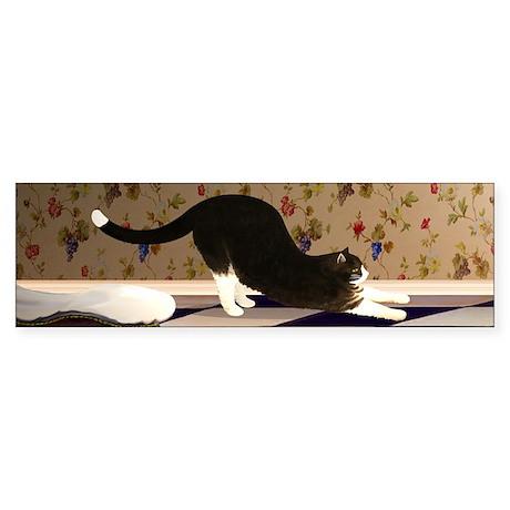Tuxedo Cat Stretching Sticker (Bumper)