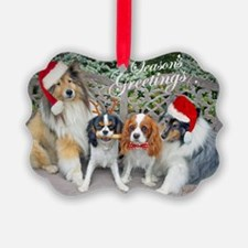 Cavalier and Sheltie Season Greet Ornament