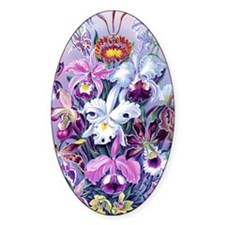 Cattleya, Lady Slipper Orchids 34 X Decal