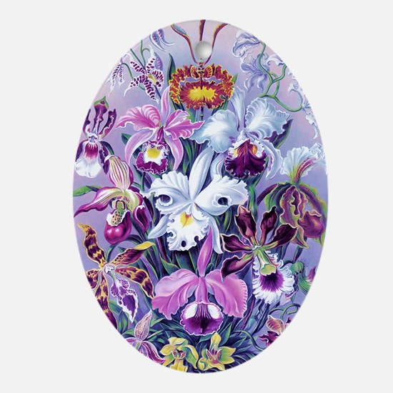 Cattleya, Lady Slipper Orchids 34 X  Oval Ornament