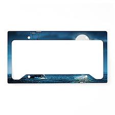 3x5_Rug39 License Plate Holder