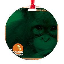The Orangutan Project Ornament