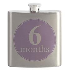 6 months Flask