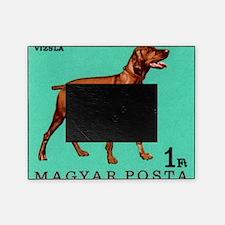 1967 Hungary Vizsla Dog Postage Stam Picture Frame