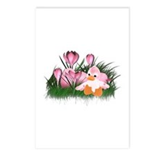 LITTLE PINK DUCK Postcards (Package of 8)