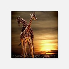 "Giraffes Square Sticker 3"" x 3"""