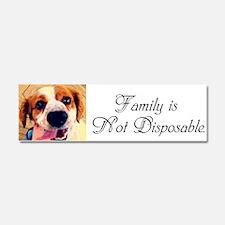 &Quot;Family Is Not Disposable&Quot; Car Magnet 10