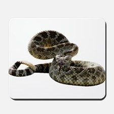Rattlesnake Photo Mousepad