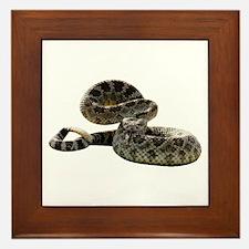 Rattlesnake Photo Framed Tile