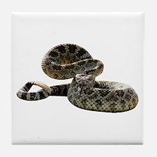 Rattlesnake Photo Tile Coaster