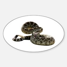 Rattlesnake Photo Oval Decal