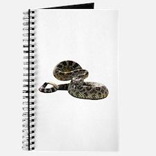 Rattlesnake Photo Journal