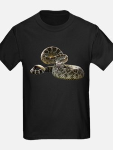 Rattlesnake Photo T