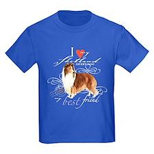 Shetland Sheepdog T