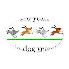 60 birthday dog years 1 Oval Car Magnet