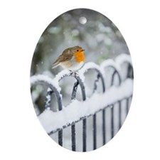 Robin in the Snow Oval Ornament