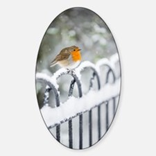 Robin in the Snow Decal
