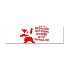 They see me dashing Car Magnet 10 x 3