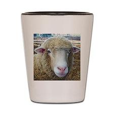 Ewephorics Sheep Stomper-Award Winning  Shot Glass