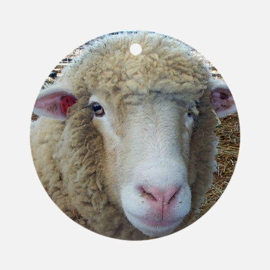 Ewephorics Sheep Stomper-Award Winn Round Ornament