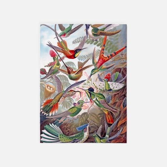 42X28 BANNER Exotic Hummingbirds 19 5'x7'Area Rug