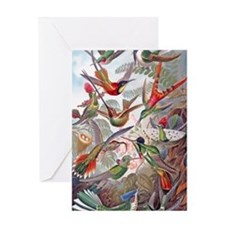 22x14 Exotic Hummingbirds RECT Decal Greeting Card