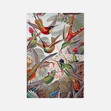 22x14 Exotic Hummingbirds RECT De Rectangle Magnet