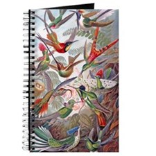 22x14 Exotic Hummingbirds RECT Decal Journal