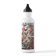 22x14 Exotic Hummingbi Water Bottle