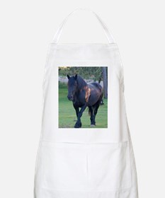 Black Percheron Mare at Pasture Apron