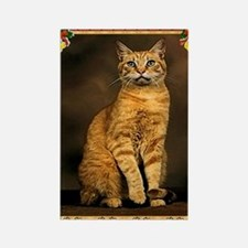 Red Tabby Cat Christmas Rectangle Magnet