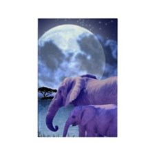 Contemplative Elephants Rectangle Magnet
